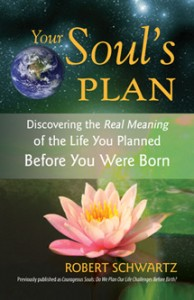 your-souls-plan-333